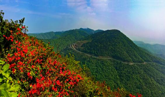 这是一篇推介家乡太浮山的极致美文,您一定会收藏